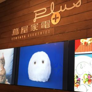リアル店舗こそ最高のメディア、4/5オープン「蔦屋家電+」が目指す小売と日本の未来